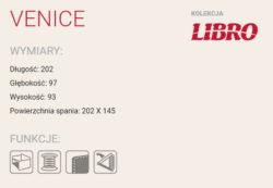 VENICE 2 250x173 - VENICE