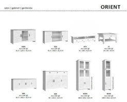 ORIENT 1 247x200 - ORIENT