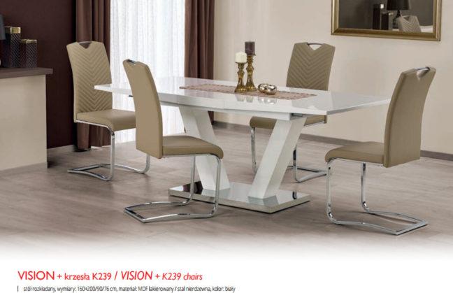 VISIONK239 648x419 VISION+K239
