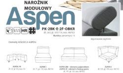 ASPEN 1 1 250x149 ASPEN