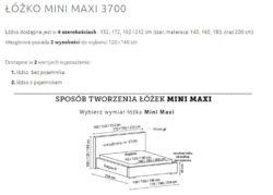 MINI MAX 3700 2 250x179 MINI MAXI 3700
