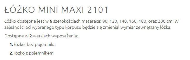 MINI MAXI 2101 1 648x207 MINI MAXI 2101 1