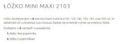 MINI MAXI 2103 5 250x91 MINI MAXI 2103