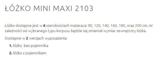 MINI MAXI 2103 5 648x237 MINI MAXI 2103 5
