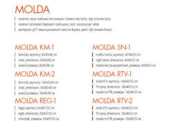 MOLDA 1 250x194 MOLDA