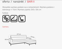 BARI II 2 1 250x200 - BARI II