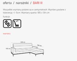 BARI III 2 1 250x200 BARI III