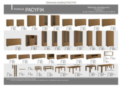 PACYFIK 3 250x179 Pacyfik