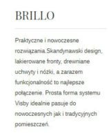 BRILLO OPIS 161x200 BRILLO