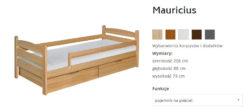 MAURICIUS 5 250x112 MAURICIUS