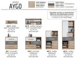 AYGO 4 250x195 AYGO