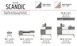 SCANDIC 9 250x150 SCANDIC