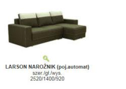LARSON 2 250x176 - LARSON