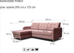 PINKO 9 250x178 PINKO