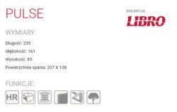 PULSE 4 250x159 PULSE