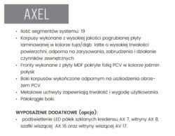 AXEL INF.2 250x195 - AXEL