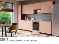 SOFIA 2 250x186 SOFIA