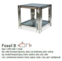 FOSSIL B 1 202x200 - FOSSIL B