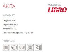 AKITA 3 250x191 - AKITA