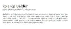 BALDUR 2 250x104 - BALDUR