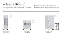 BALDUR 5 250x163 - BALDUR