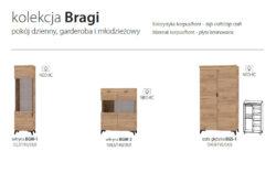 BRAGI 6 250x167 - BRAGI
